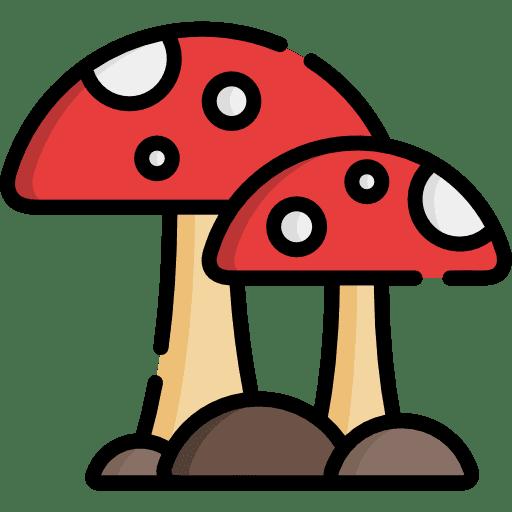 Mushroom Farm