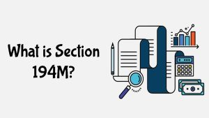 Read more about the article What is Section 194M?